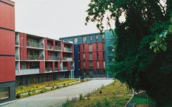 50Jahre-kloster-bau